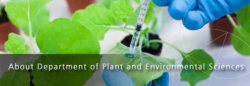 About Department of Plant and Environmental Sciences