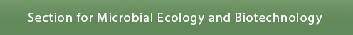 Microbial Ecology and Biotechnology
