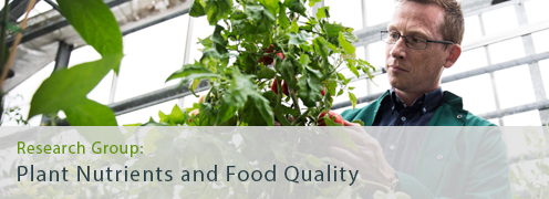 Plant Nutrients and Food Quality